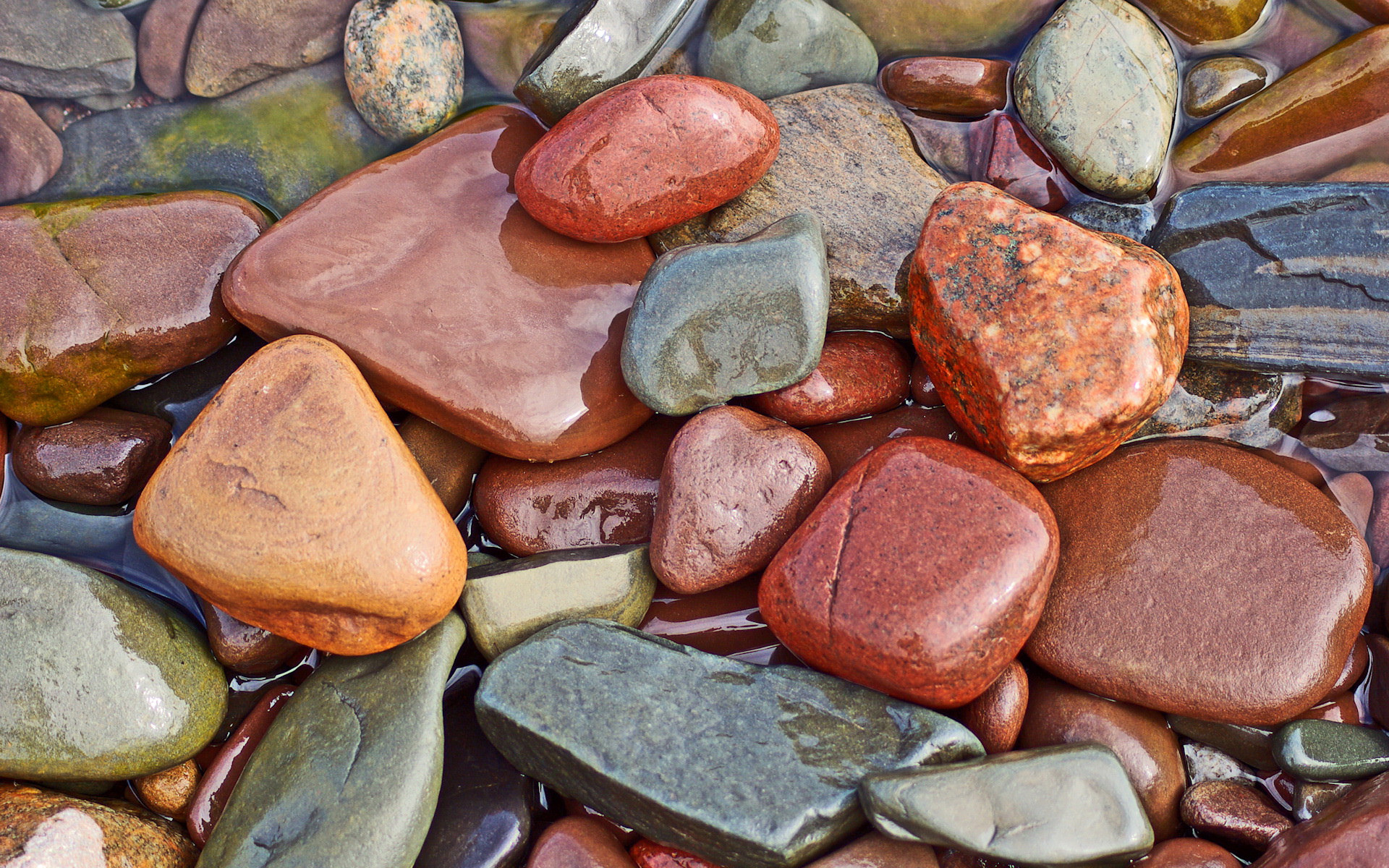 ?image=Diger/Wet_rocks_1920x1200.jpg